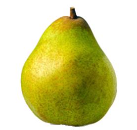 Doyenne du comice Pears