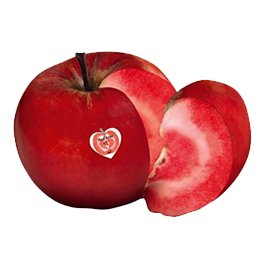 Red Love Apples